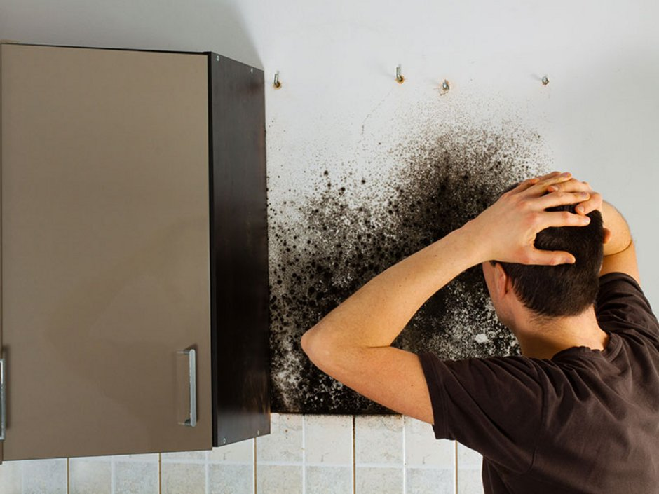 Schimmel In Wohnung Was Tun : schimmel in der mietwohnung das ist zu tun ~ Watch28wear.com Haus und Dekorationen