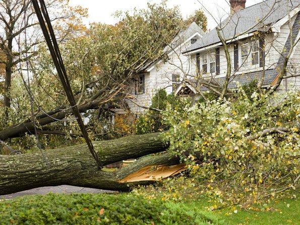 Gebäudeversicherung, ausgerissene Bäume sind auf Häuser gefallen, Foto: iStock/CHRISsadowski